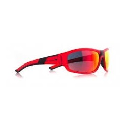 Red Bull Racing Sonnenbrille EPIC4